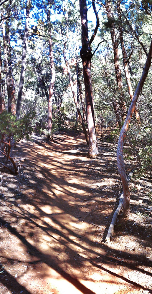 Sedona Brins Mesa Trail - Sedona, Arizona